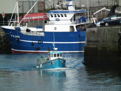 Trawler Starlight PD - 340